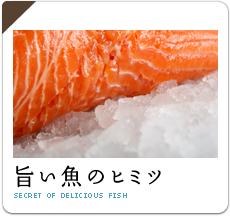 旨い魚のヒミツ